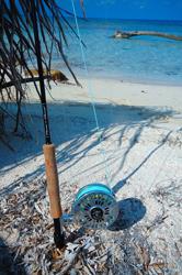 Séjour de pêche aux Honduras Canne Thomas & Thomas XL4 9p soie 8 Moulinet Abel Super 9 - Custom Platine