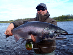 Saumon Silver capturé en Alaska - canne T&T Solar - moulinet Abel Super 5N