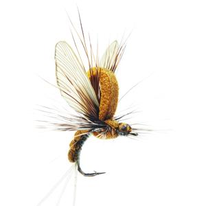 Mouche J:son émergente d'éphémère - 18 - 15 mm h16 - Olive Brown