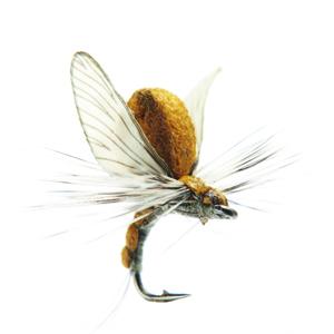 Mouche J:son émergente d'éphémère - 20 - 10 mm h20 - Olive Brown