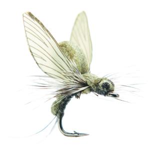 Mouche J:son émergente d'éphémère - 21 - 10 mm h20 - Light Olive
