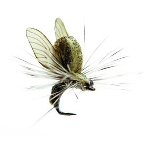 Mouche J:son émergente d'éphémère - 23 - 7 mm h24 - Light Olive