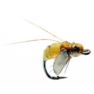 Mouche J:son emergente de trichoptère - 79 - 7 mm h20 - Yellow