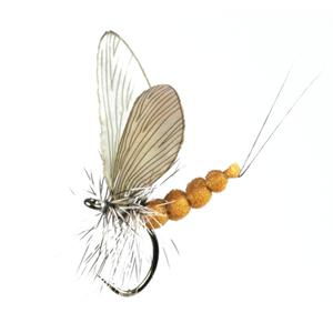 Mouche J:son éphémère adulte - 30 - 15 mm h16 - Olive Brown
