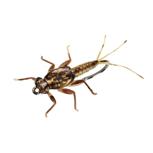 Mouche J:son Nymphe d'éphémère - 5 - 18 mm h12 - Olive Brown