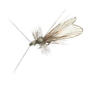 Mouche J:son trichoptère adulte - 83 - 21 mm h12 - Ash Grey