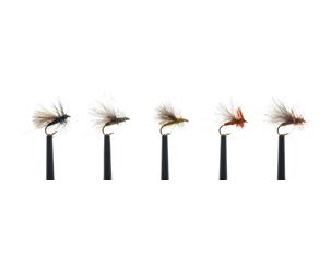 Mouches Lm2g sélection spéciale - Ducks Dun CDC ZADR049