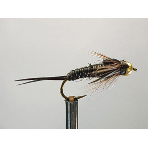 Mouche Lm2g nymphe casquée - N20 - Nymphglas Blk Stonefly  h10