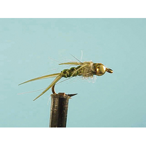 Mouche Lm2g nymphe casquée - N33 - Olive Stonefly  h14