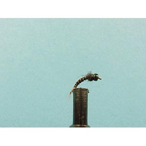 Mouche Lm2g nymphe casquée - N42 - Heavyweight Black Bug  h18