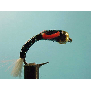 Mouche Lm2g nymphe casquée - N6 - Black Buzzer Special  h 12