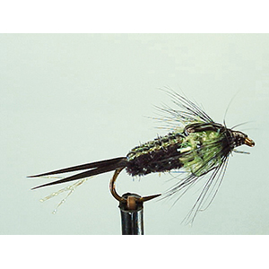 Mouche Lm2g nymphe légère - N83 - Chartreuse Crawler  h12