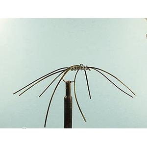 Mouche Lm2g nymphe légère - N89 - Black Northem Spider  h6