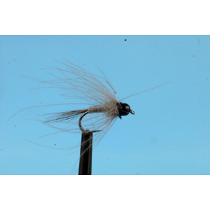 Mouche Lm2g nymphe tungsten - N48C -Grey Glister CDC Nymph  h14