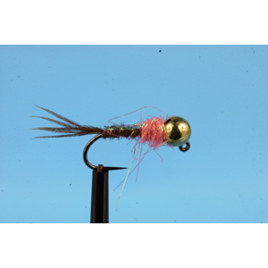 Mouche Lm2g nymphe tungsten - N48H -Coral Thorax Flashback  h10