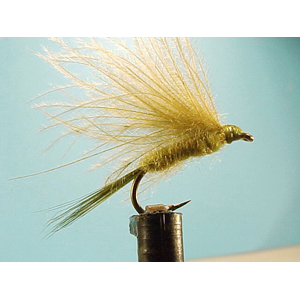 Mouche Lm2g mouche sèche - S22 - Fastwater Olive  h 14