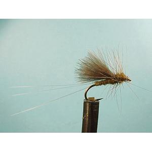 Mouche Lm2g mouche sèche - S31 - Blue Winged Olive Dun  h 16