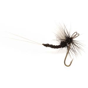 Mouche Terenzio 18 - Black Gnat CDC  h18