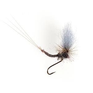 Mouche Terenzio 31 - Parachute Blue Dun  h16