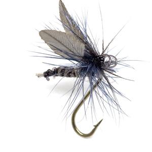 Mouche Terenzio 7 - Blue Dun  h16